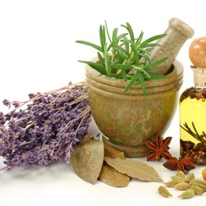 Care sunt funcțiile proteinelor, carbohidraților, grăsimilor, apei, vitaminelor și mineralelor?